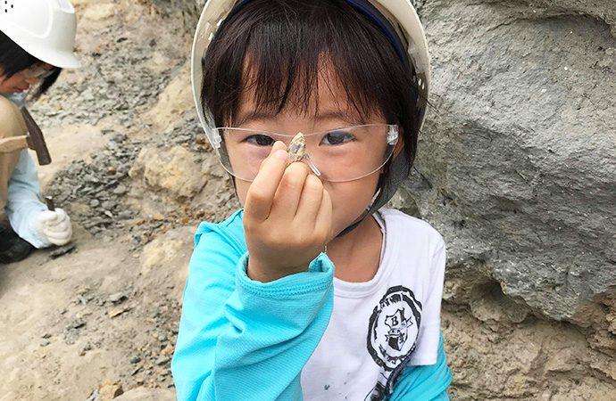 化石発掘体験「発掘したサメの歯?」・福島県 アンモナイトセンター