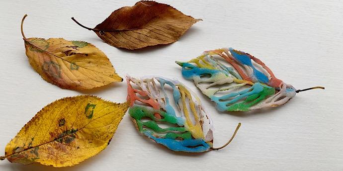 落ち葉が美しく変身! カラフル透かしリーフを作ろう【簡単工作】